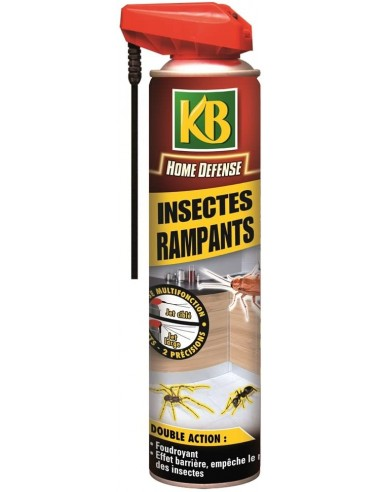 KB Aérosol multifonction foudroyant anti-insectes rampants